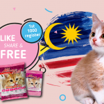 FREE AlleyCat Foods Sample Giveaway! 免费猫咪食料!